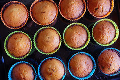 Baked Cupcakes Stock Photo