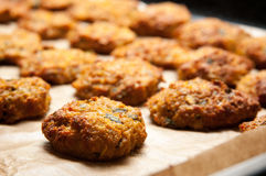 Baked cutlets Royalty Free Stock Photo
