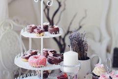Baked donuts and mini donuts Royalty Free Stock Photo