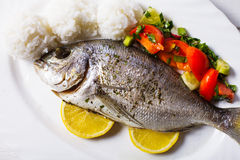 Baked dorado fish Royalty Free Stock Photos