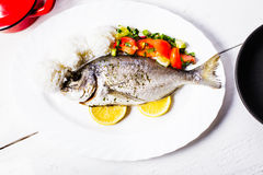 Baked dorado fish Stock Image