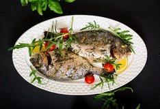 Baked dorado fish in garlic dill sauce Royalty Free Stock Photo