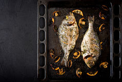 Baked dorado fish in garlic dill sauce with mushrooms and lemon Royalty Free Stock Photo
