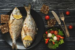 Free Baked Dorado Fish On A Black Plate, Salad With Tomato Mozzarella And Lettuce Leaves. Royalty Free Stock Image - 105707566