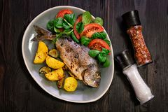 Baked Dorado fish with vegetables in the oven on a dark background. stock photography