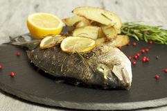Baked dorado with rosemary baked potato wedges. Food & Dishes for Restaurants, Cuisine of the peoples of the world, Healthy Recipes Royalty Free Stock Image
