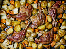 Baked duck leg. S with vegetables and potherbs Royalty Free Stock Photos