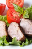 Baked duck meat fillet with vegetables vertical Stock Images