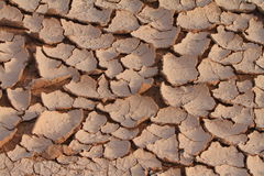 Baked earth Stock Images