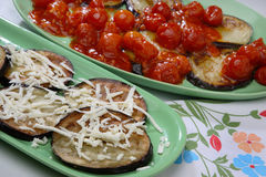 Baked eggplant. With tomato on plate Stock Image