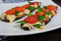 Baked eggplant with tomato and basil and cheese Royalty Free Stock Photo