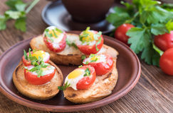 Baked eggs in tomato cups. Stock Images