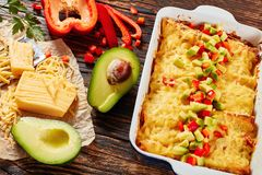 Baked enchiladas of rolled corn tortillas. Enchiladas of rolled corn tortillas stuffed with shredded meat, sauce, grated cheese and pieces of chili in baking Stock Image