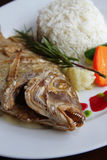 Baked exotic fish on dish Royalty Free Stock Photo