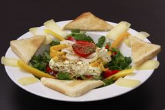Baked feta cheese on labs lettuce. On white plate Royalty Free Stock Image