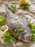 Baked fish Stock Image