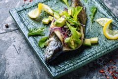 Baked fish with avocado. Baked trout with avocado. Baked fish with lettuce and avacado stock photography