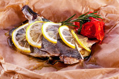 Baked fish close-up decorated with lemon and rosemary Royalty Free Stock Photography