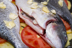 Baked fish. Royalty Free Stock Photography