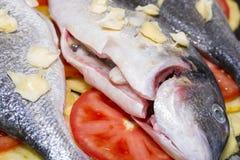 Baked fish. Royalty Free Stock Image