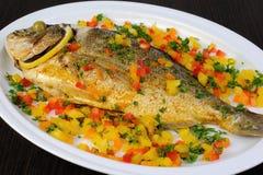Baked fish Dorado Royalty Free Stock Photo