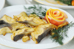 Baked fish fillet Royalty Free Stock Photos