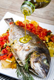 Baked fish with fresh vegetables Stock Images