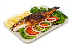 Baked fish isolated Royalty Free Stock Images