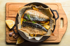 Baked fish Stock Photography