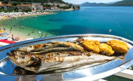 Baked fish with a outstanding sea view Royalty Free Stock Image