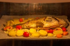 Baked fish in the oven with vegetables. stock photo