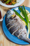 Baked fish on plate with lemons and green onion. Baked fish on blue plate with lemons and green onion Stock Images