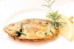 Baked fish on a plate Stock Images