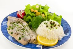 Baked Fish with Rice,Salad Royalty Free Stock Photography