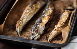 Baked Fish on a Roaster Pan Stock Photography