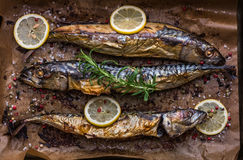 Baked Fish on a Roaster Pan. Baked Whole Fish with Spice, Lemon and Rosemary on a Roaster Pan with Baking Paper royalty free stock image