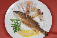 Baked fish with shrimps Stock Photos