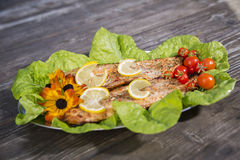 Baked fish slices with tomato and salad Royalty Free Stock Photos