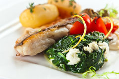 Baked fish with spinach Stock Photography