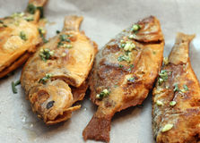 Baked fish. Topped with sauce made from onions Royalty Free Stock Photo