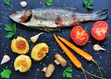 Baked fish with vegetables on a black background Royalty Free Stock Photos