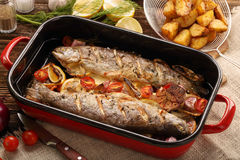 Baked fish with vegetables and potatoes in pan Royalty Free Stock Photography