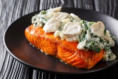 Baked Florentine salmon with creamy wine sauce, seasoned with roasted spinach and mushrooms closeup on a plate. horizontal. Baked Florentine salmon with creamy stock images