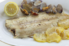 Baked flounder Stock Photo