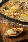 Baked Fontina Cheese Dip Stock Photography