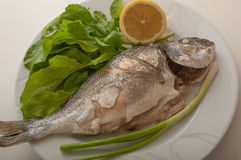 Baked gilthead on plate stock image