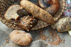Baked goods still life. Detail of various breads and wheat Stock Photography