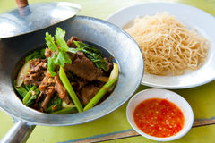 Baked goose with chinese noodle and sauce Royalty Free Stock Photos