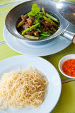 Baked goose with chinese noodle and sauce Stock Photos
