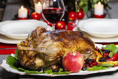 Baked goose on wooden table Royalty Free Stock Images